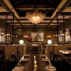 AcoustiDesign used to complement formal the formal dining areas at Sotto 13 restaurant.