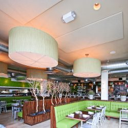 The Daily Kitchen and Bar had acoustical panels installed direct to the ceiling to reduce noise and improve their guests dining experience.